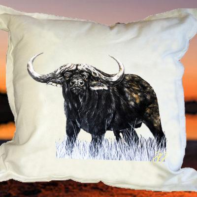 Buffel1 - Kussing